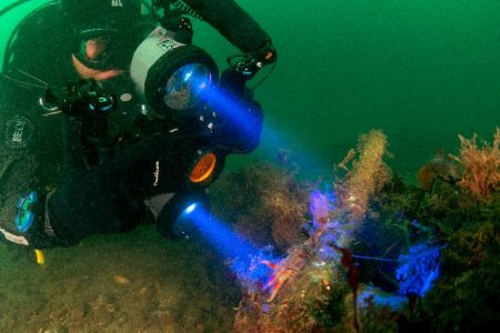 DivingROVmainpage-13.jpg